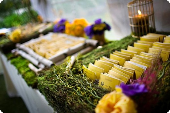 Sara France Photo moss escort cards yellow purple wooden rustic
