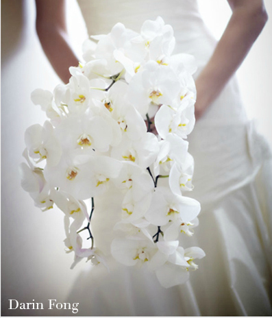 phalaenopsis-wedding-bouquet-aileen-tran via  Source