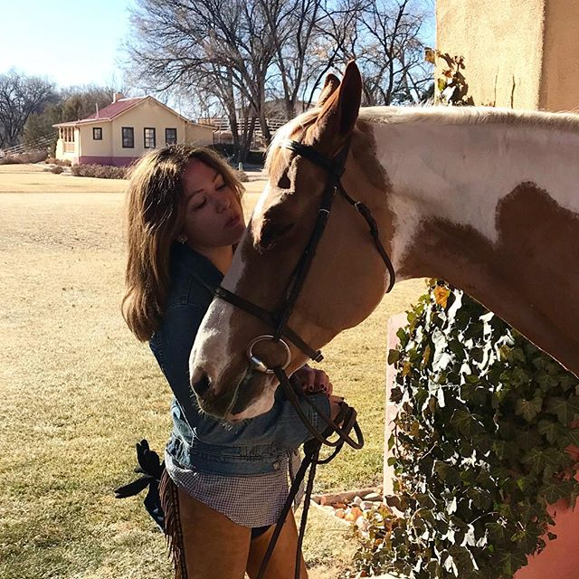Palomino paint love ☀️🐴🧡 courtesy of @lindsay_cornell  me & mrs Harlow #lamesitaranch