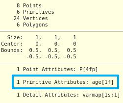 Class: Primitive  age 가 박스의 면 어트리뷰트로 할당된다.