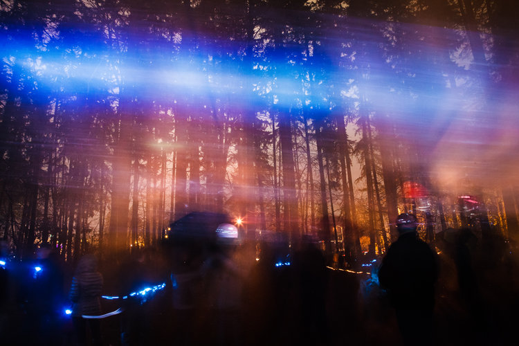 I Saw My Birth, Love, and Death in the Sky  Interactive Light Art Installation  Heron Rookery Forest, Redmond, WA, USA, December 2017