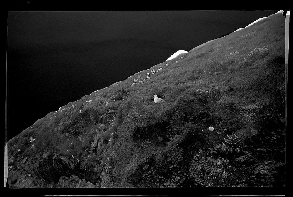 11. St Kilda,1965.jpg