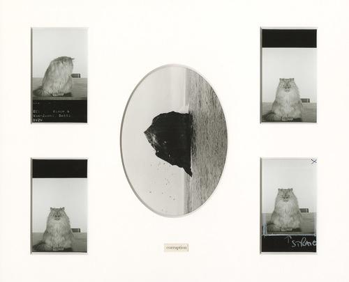 Album 31, page 8, 2014