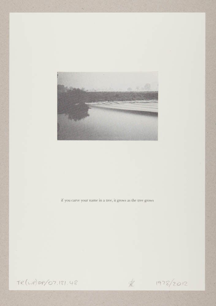 TR(WP)13.jpg