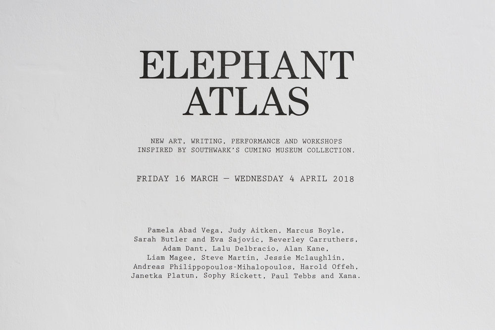 Elephant Atlas_Lewis Bush (17).jpg