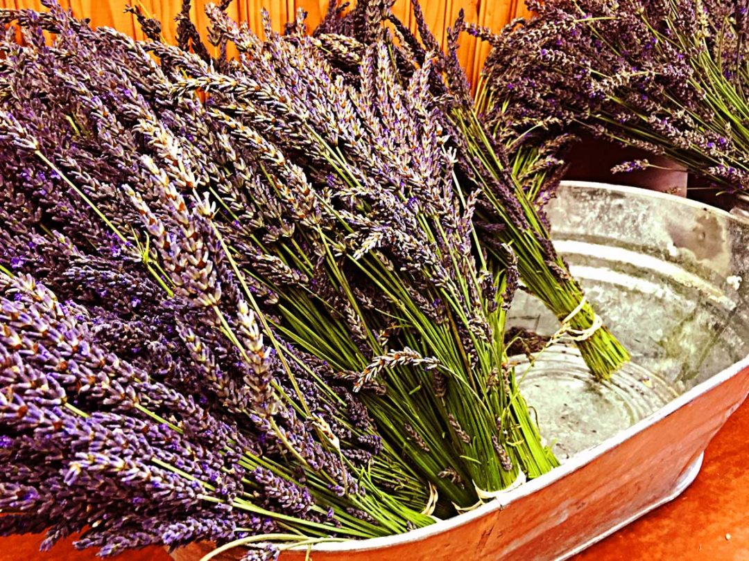 lavender-tub