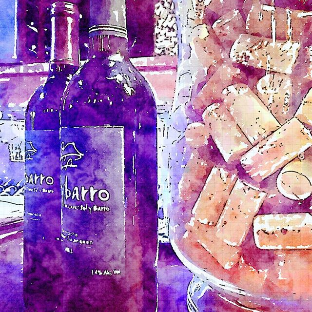A #Waterlogue version #solybarro #wine #winetasting