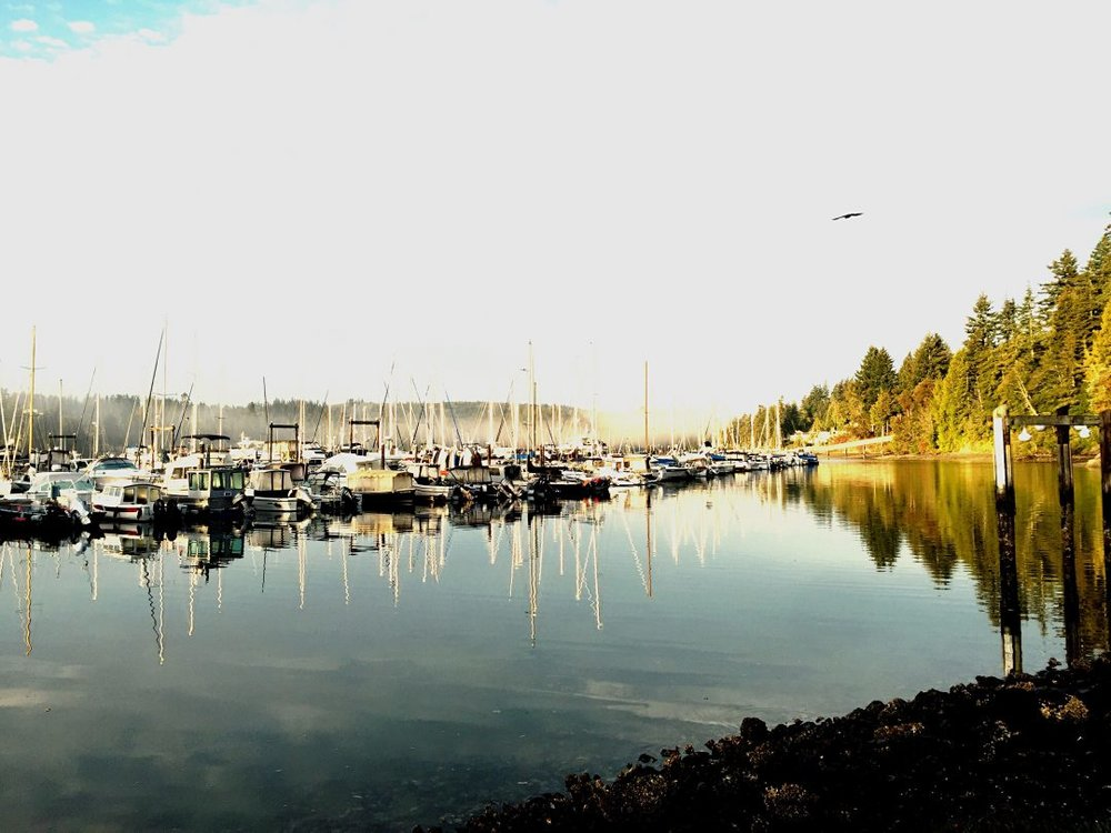 Port Ludlow Marina Fall