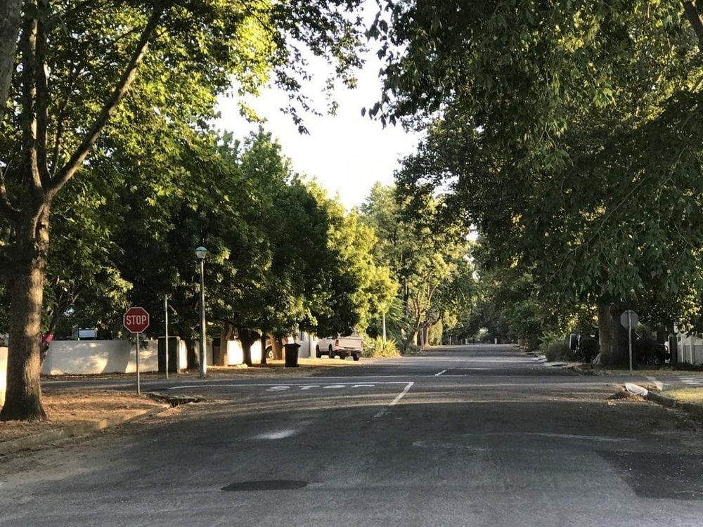 Tree lined street in Villiersdorp