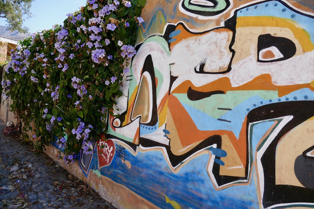 Flowers tumbling over the graffiti