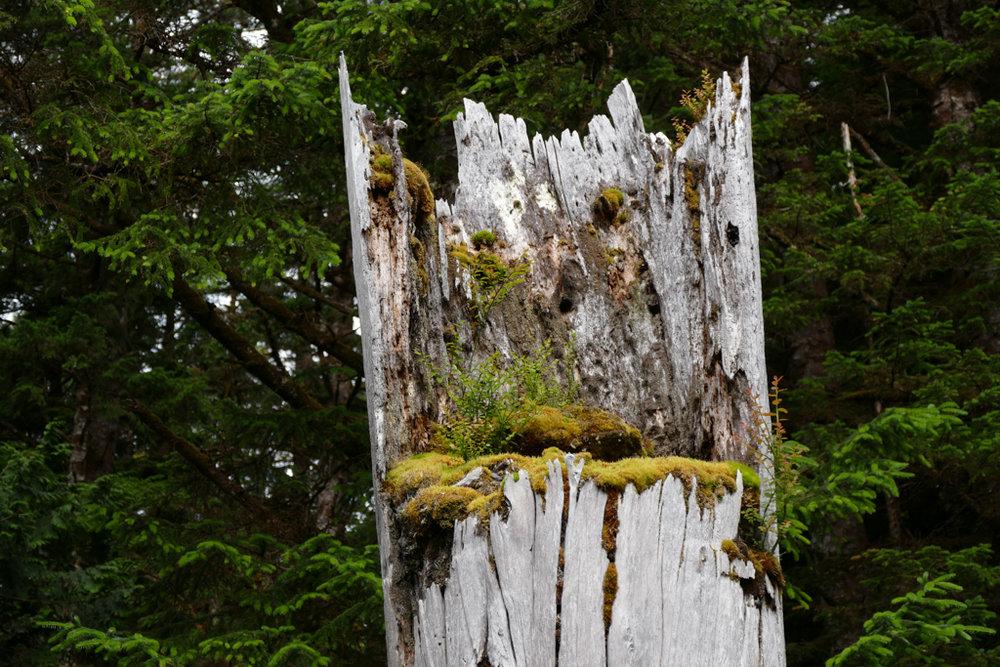 Mortuary Pole