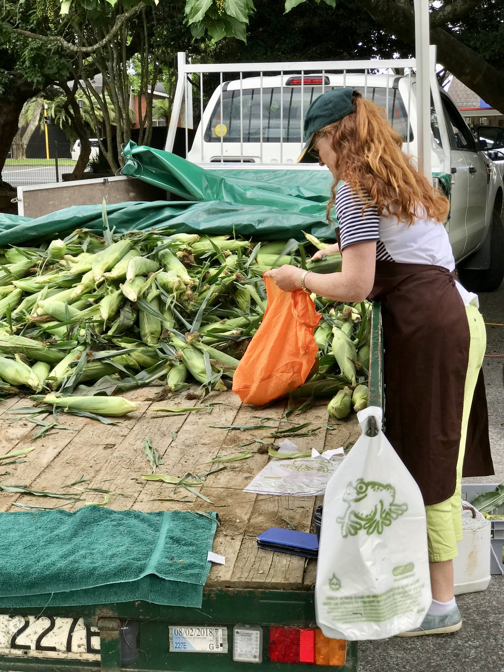 Fresh corn at the farmers market in Tauranga