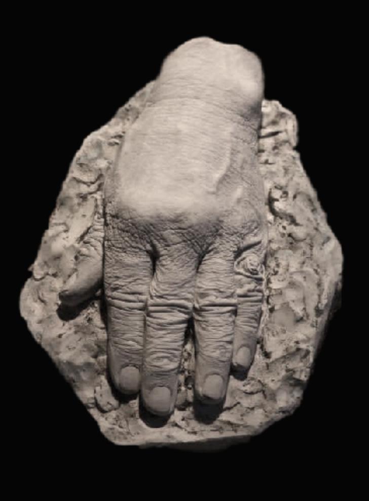 viktor hand.jpg