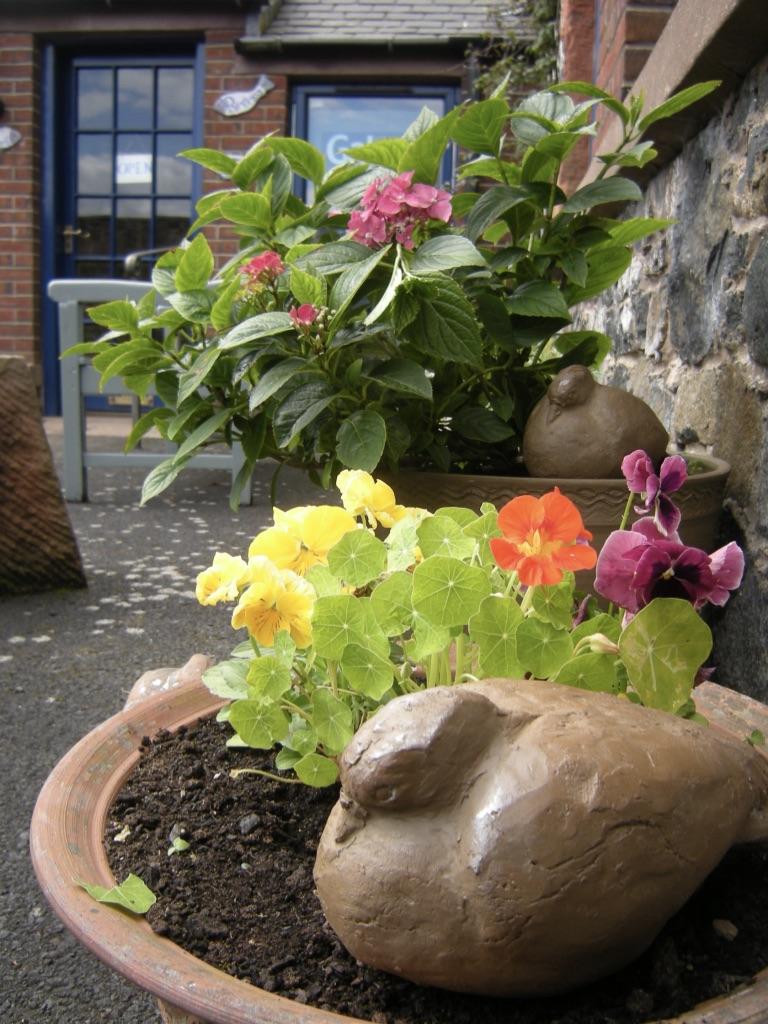 Kinsman Blake Gallery Courtyard, Pottery Pigeons, Flower Pots.jpg