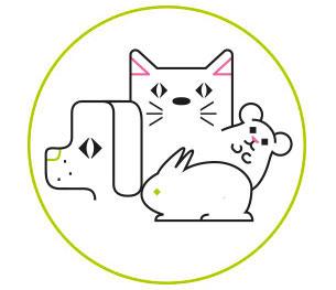 conseil-animaux_2.jpg