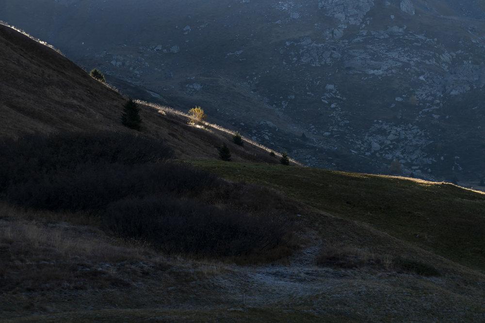 Herbststimmung Surses-Oberhalbstein (1/3)