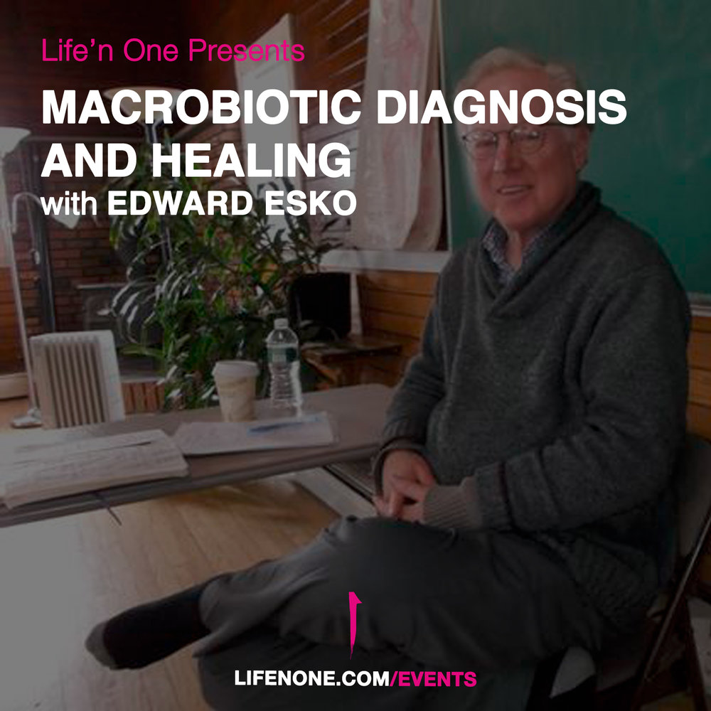 flyer_Macrobiotic Diagnosis and Healing.jpg