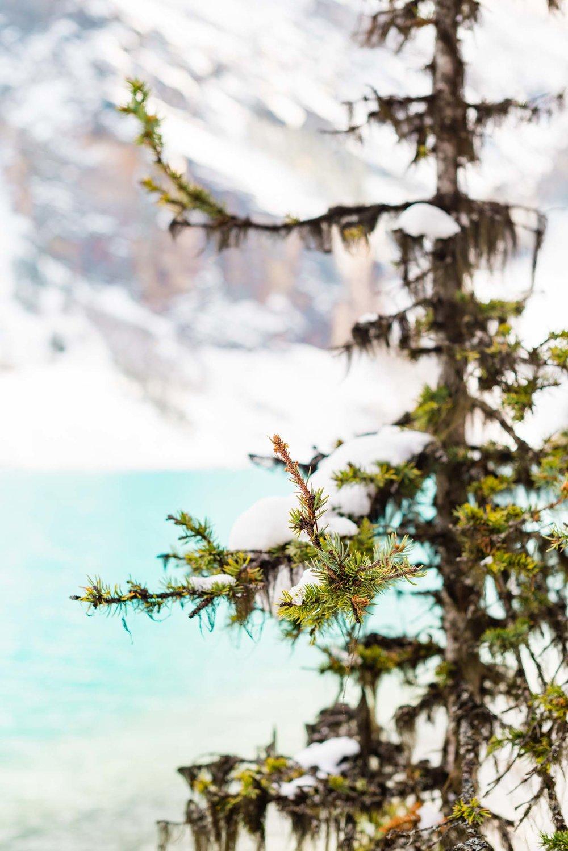©www.markiewalden.com-canada-montana-travel-guide-6.jpg