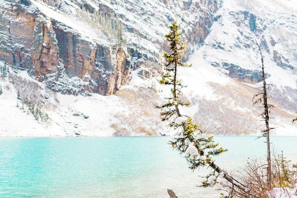 ©www.markiewalden.com-canada-montana-travel-guide-7.jpg
