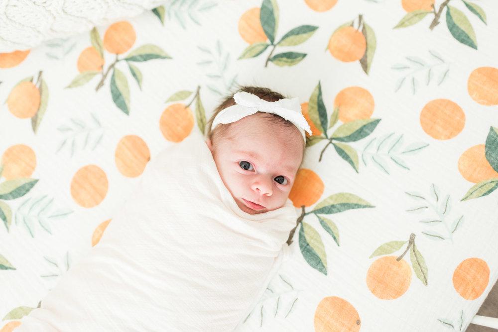 Baby Girls & Oranges Columbia, SC Newborn Session_Markie Walden Photography-30.jpg