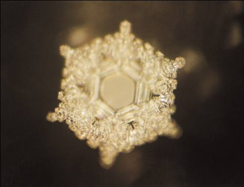 Love and gratitude. This crystal is perfect, indicating that love and gratitude are fundamental to life in all of nature. -Masaru Emoto.
