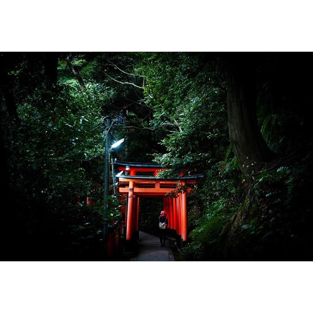 Just after sunset; the winding climb through some of the 10,000 Torii gates to the summit of Mount Inari - Kyoto.