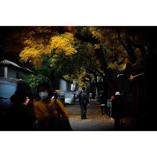 The Autumn colours of a few days spent in Beijing on the way home from Japan; viewing a city once called home, for a while, from a different perspective - and re-acclimatising to the unexpectedly overwhelming comfort of the chaos.