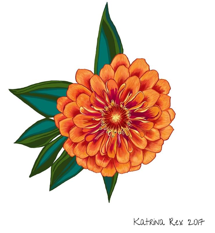 marigold5.jpg