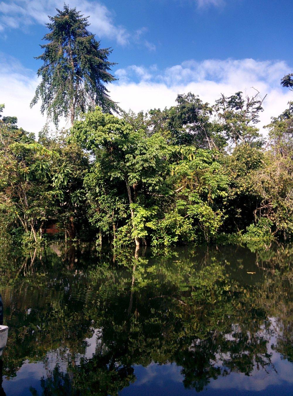 Rio Dulce...a little flooded