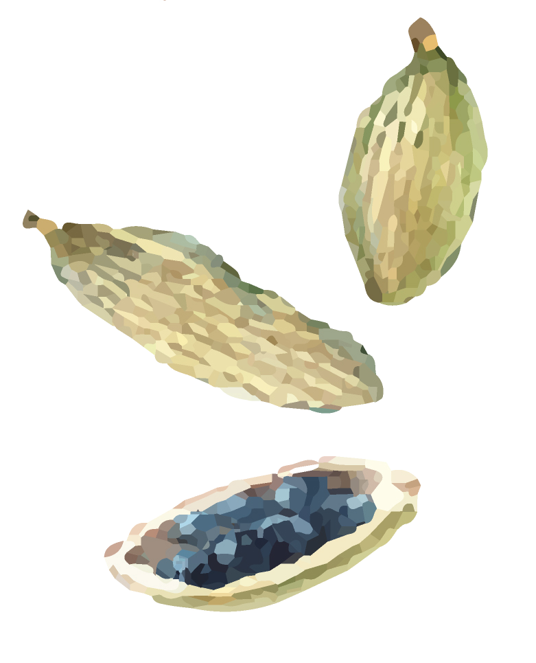 Watercolor indian cuisine seeds.png
