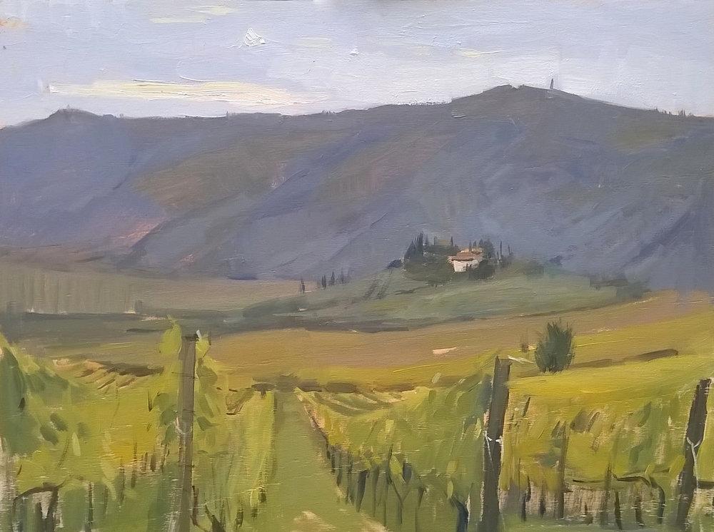 Pontassieve hills.jpg