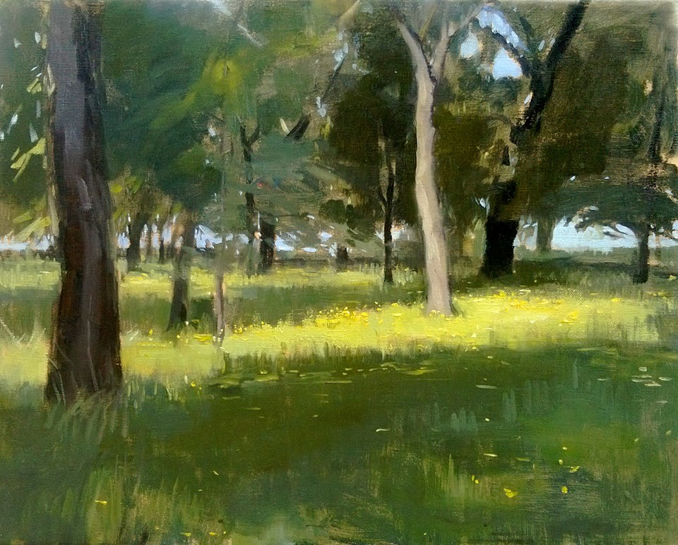 'Sunlight in parco Cascine' 40 cm by 50 cm Oil on linen