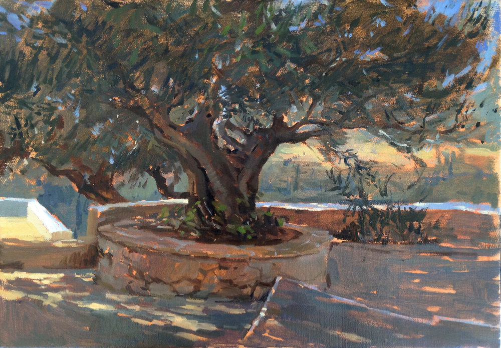 Under the Olive grove 35 cm x 50 cm Oil on linen