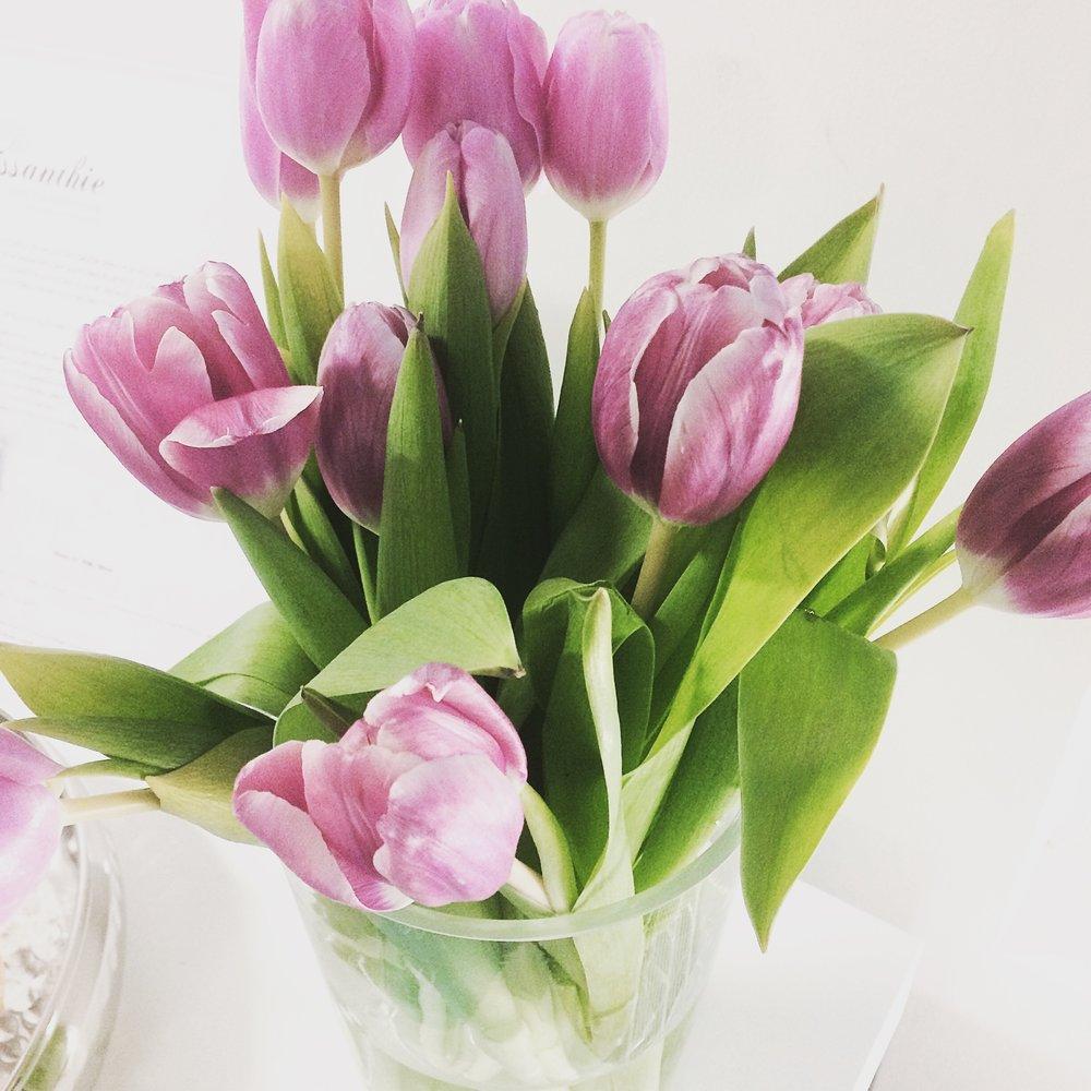Tulppaanit ovat aina ihania!