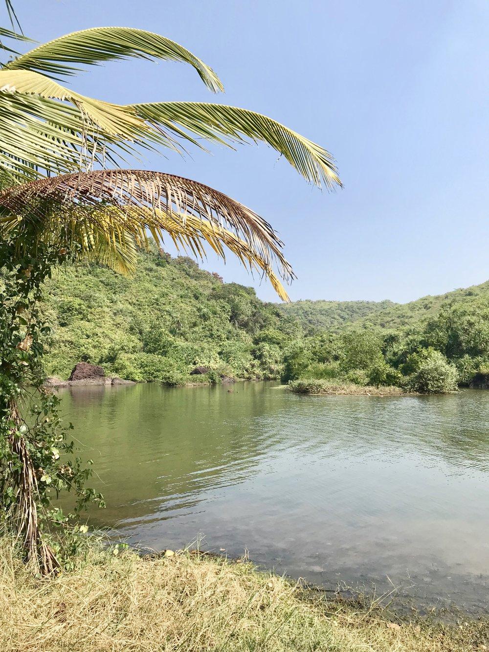 Arambol Beach / Sweet Water Lake