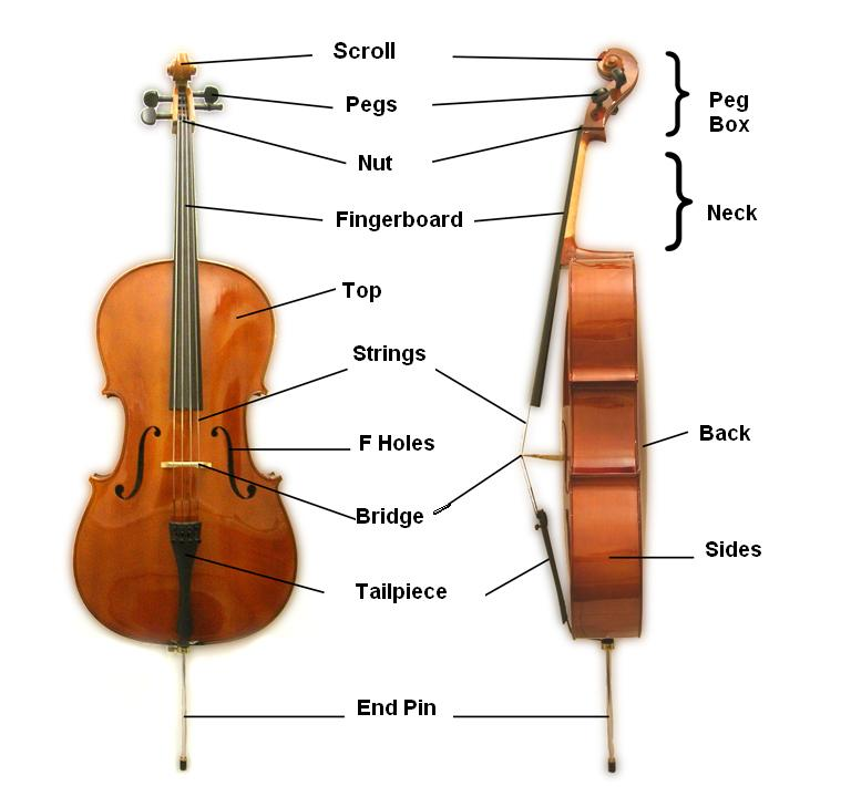 String Instruments likewise Label the Violin likewise Parts of a guitar    ESL worksheet by Marquinhos also Suzuki Violin Coloring Pages Parts Of Violin And Bow Free Worksheet furthermore Violin Parts Of the Instrument Worksheet ly Trombone Slide in addition Download AMAZING GRACE  Violin Piano And Violin Part  Sheet Music By together with Parts Of A Violin Teaching Resources   Teachers Pay Teachers likewise Piano Worksheets Parts Of Violin And Bow Free Worksheet Note Reading moreover Parts Violin Worksheet moreover Cello Parts Diagram   3 20 danishfashion mode de • as well Violin Basics   Interactive fingering charts   musical instruments as well Diagram Of Violin Parts   18 10 danishfashion mode de • also Parts Of Violin And Bow Free Worksheet Piano Lesson Worksheets in addition Violin Coloring Pages Parts Of And Bow Free Worksheet Note Reading moreover Violin Parts Worksheet 29347   MOVIEWEB in addition Parts of a Violin with Worksheet   Metropolitan Youth Orchestras of. on parts of the violin worksheet
