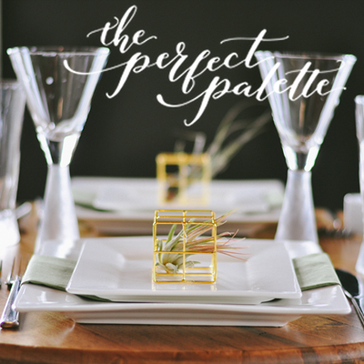 ambient plus styled shoot as seen in the perfect palette