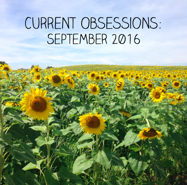Current obsessions Sept 2016