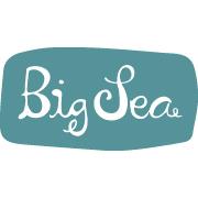 big sea web logo.jpg