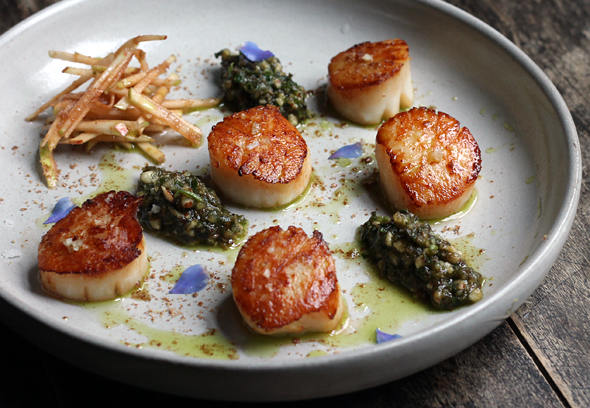 scallops+herbs+apple
