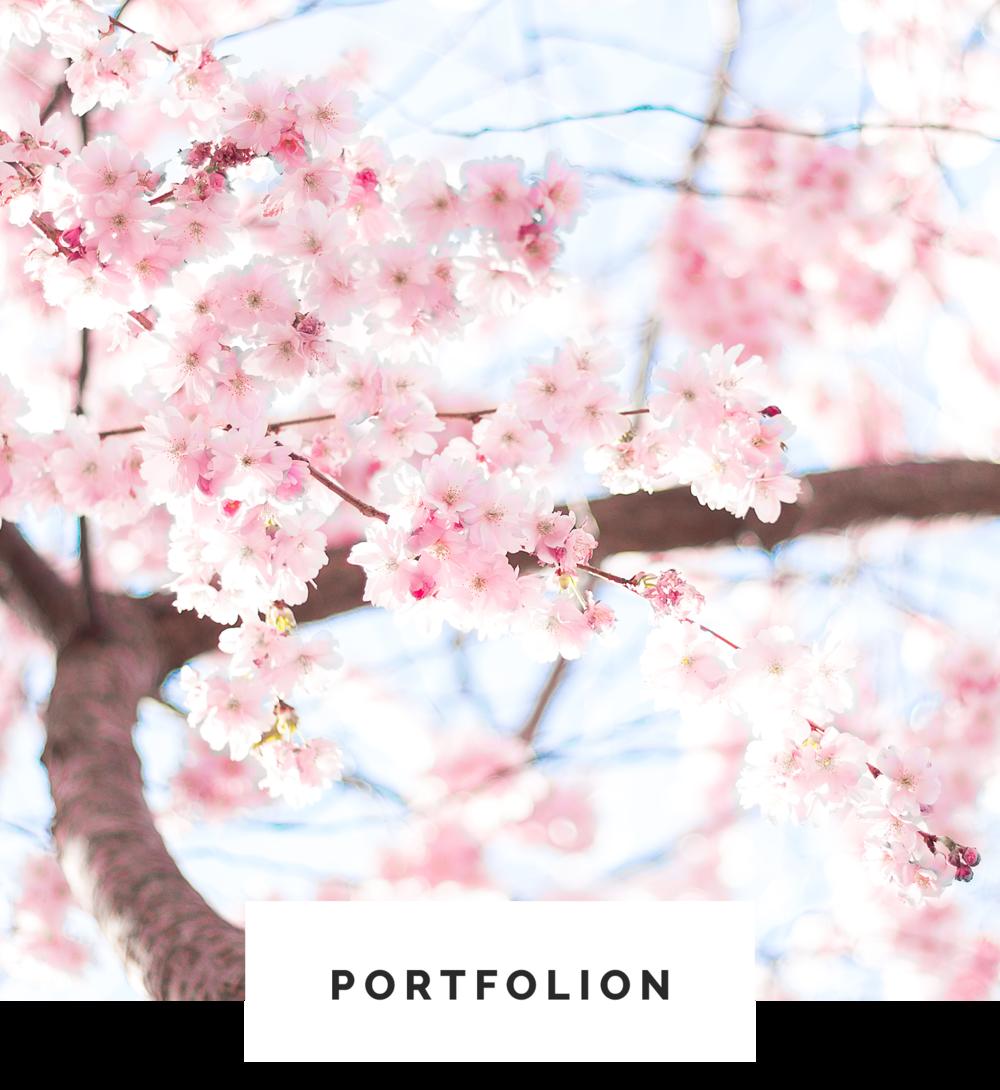 Portfolion.png