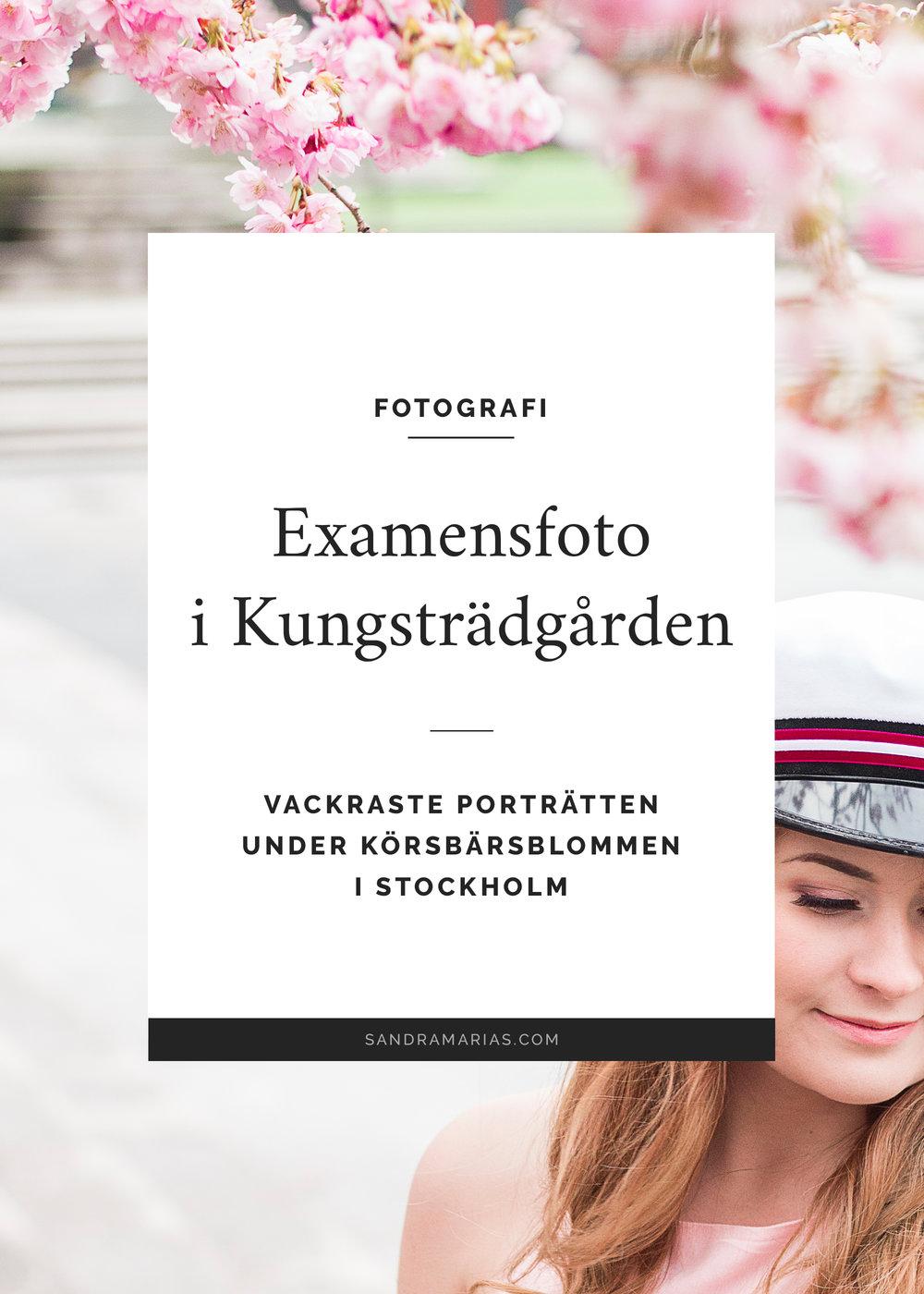 Examensporträtt i Kungsträdgården   Körsbärsträd   Sandramarias.com