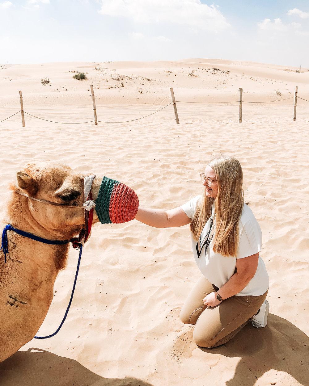 Dubai A-Ö   Dubai reseguide   Travel Guide Dubai   Dubai desert   By Sandramaria   Sandramarias.com