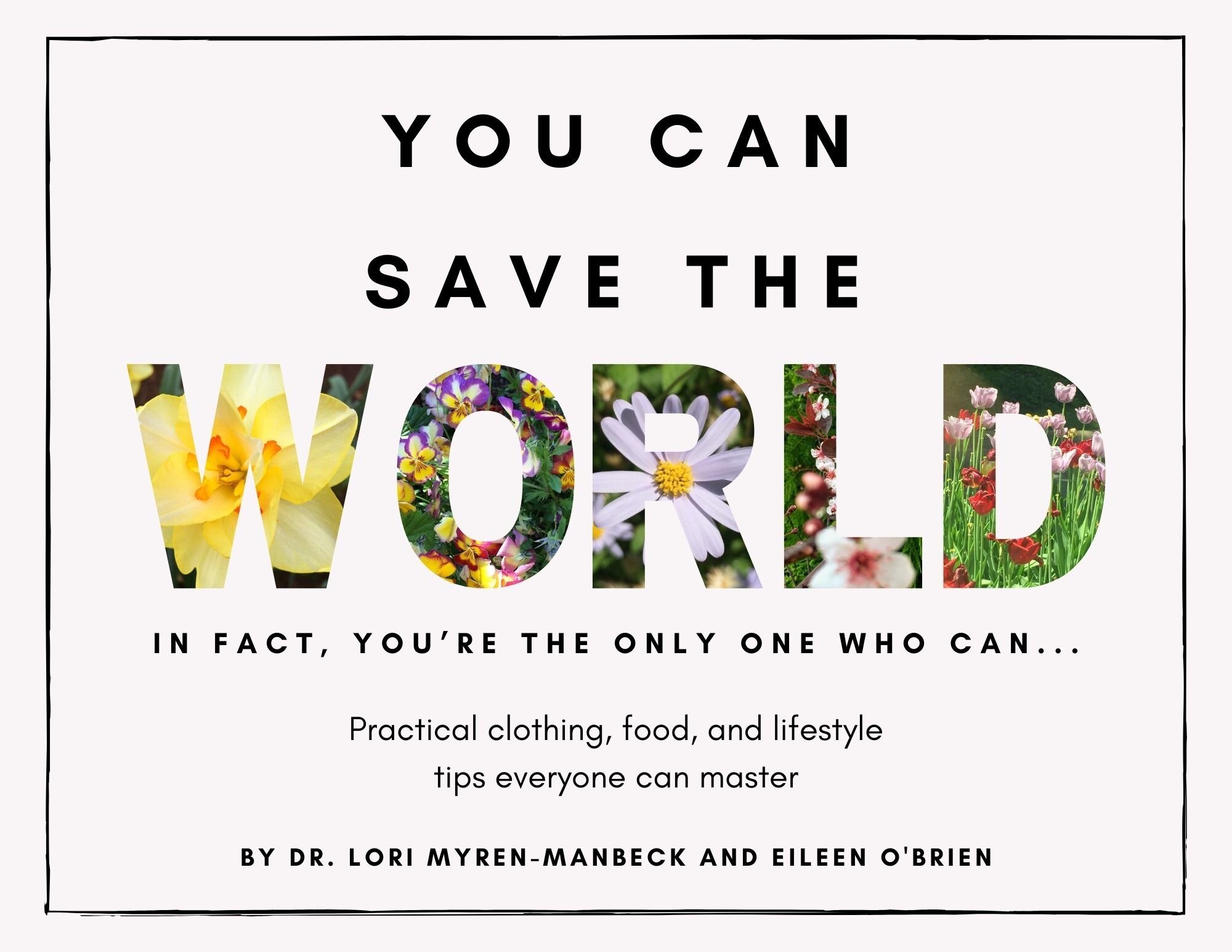 You Can Save the World  cover.