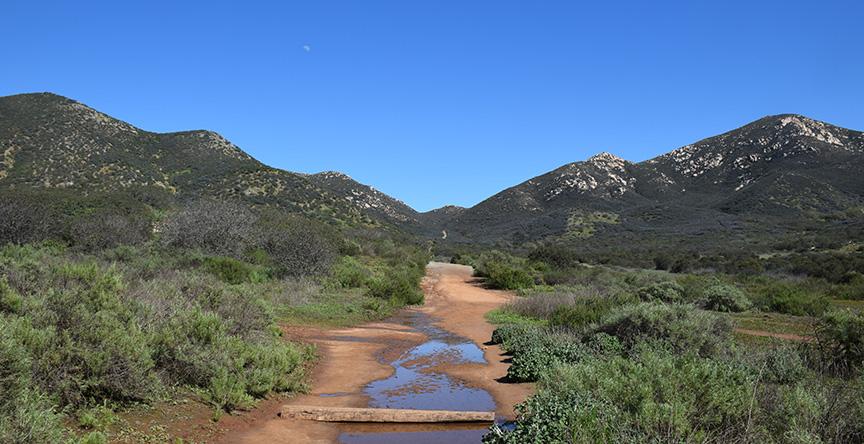 Trailhead views of Iron Mountain.