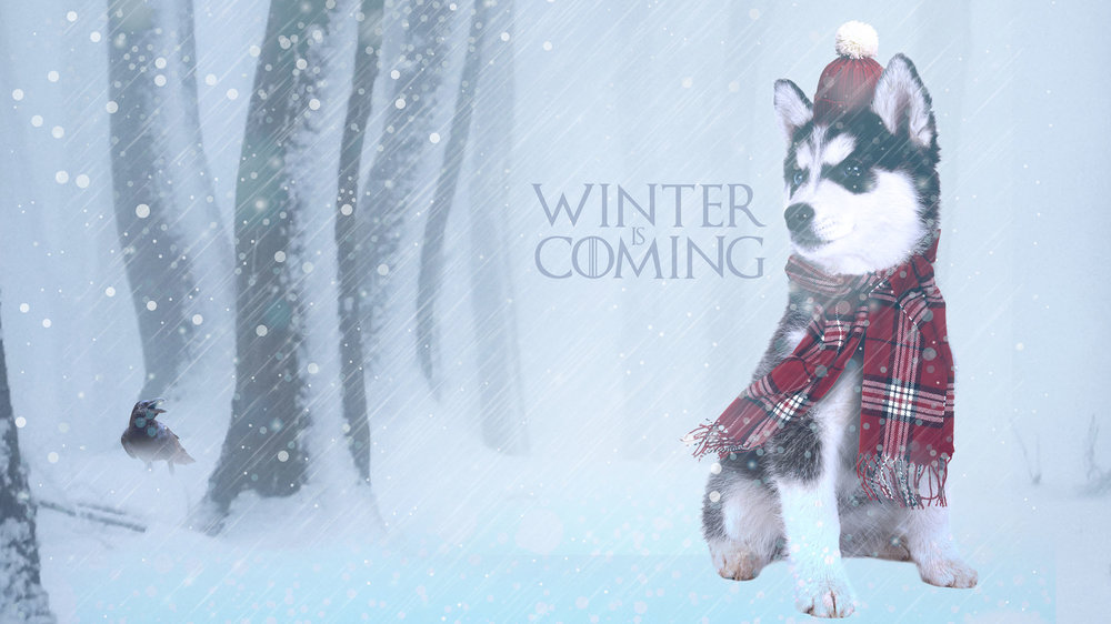 Winter is Coming Wallpaper  Copyright © 2012-2017 460 Communications Inc. All rights reserved.  This design is intended strictly for portfolio use only and cannot be reproduced in any way with out written consent from 460 Communications Inc.  ·  Photoshop