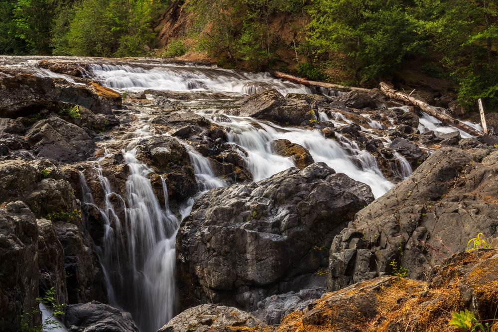 Englishman River Falls Provincial Park     Copyright © Afro Boy Productions. All rights reserved.