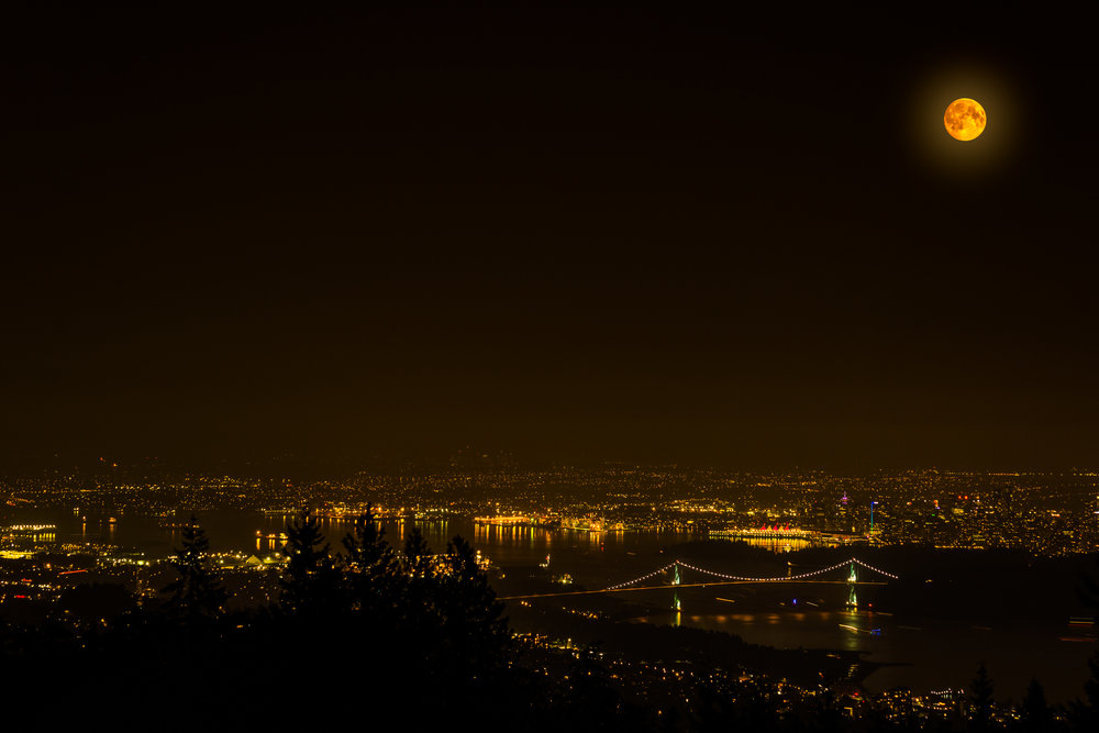 Full Moon - Vancouver, BC  Copyright © Afro Boy Productions. All rights reserved.