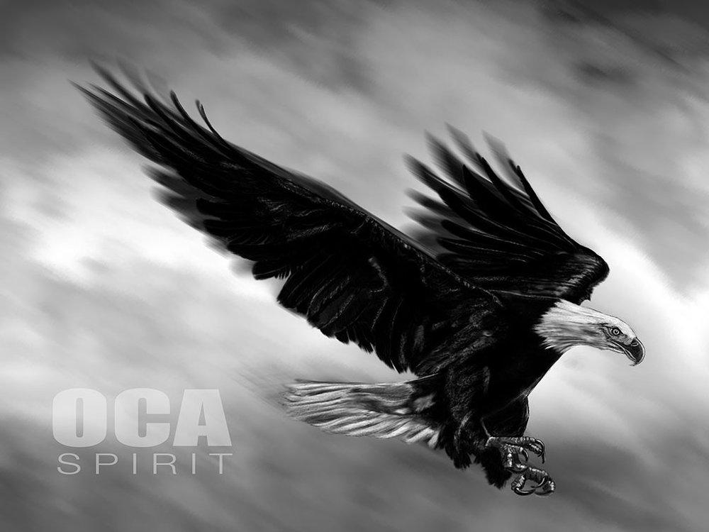 OCA-Eagle-2015-Web.jpg