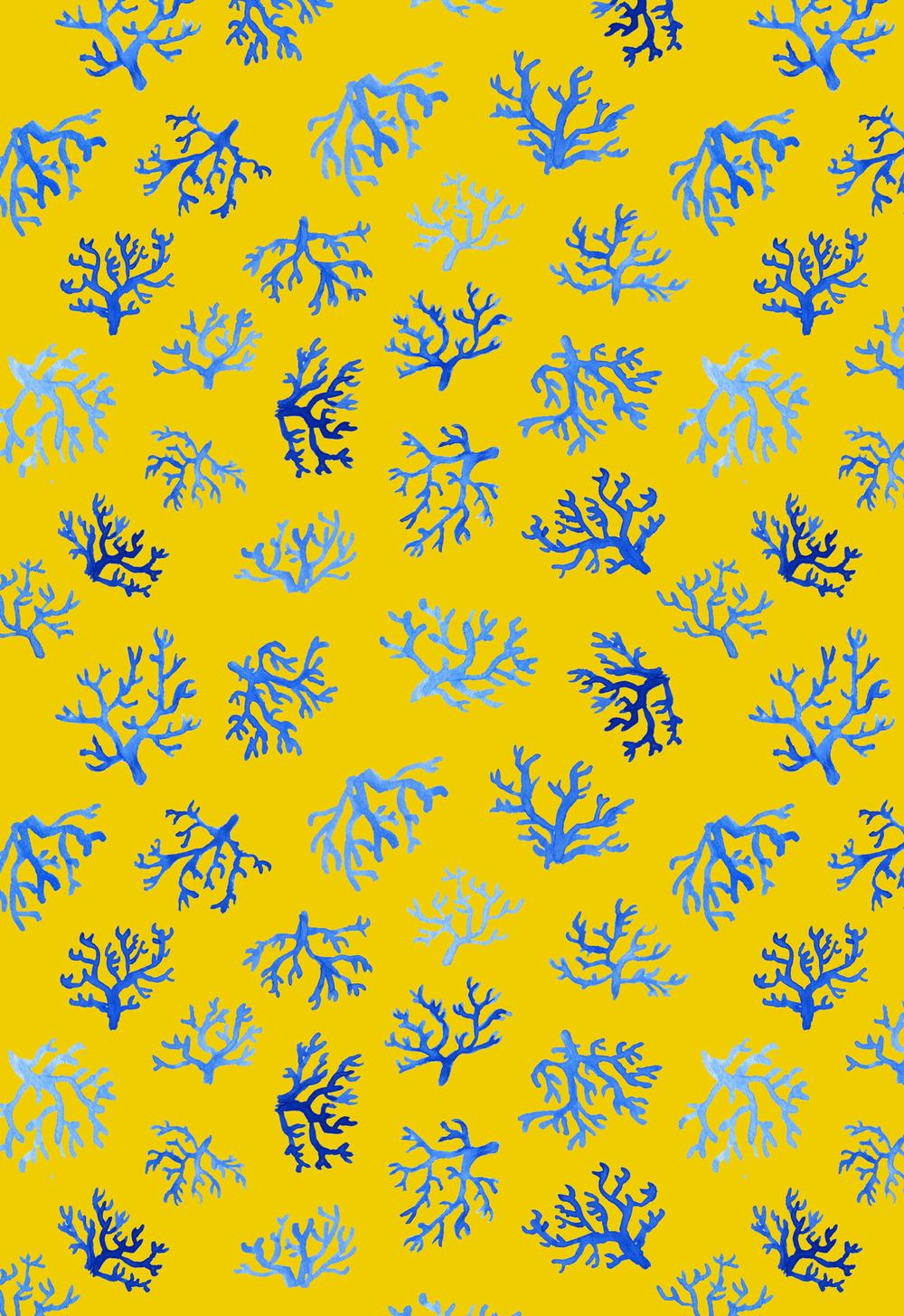 orozco-studio_motif2_coral